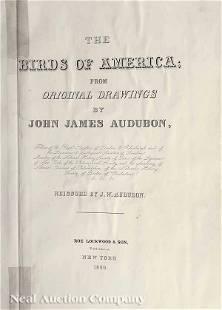 270: After John James Audubon (1785-1851)
