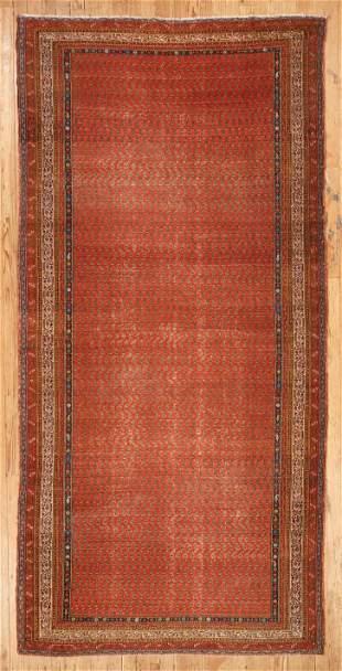 Saraband Carpet