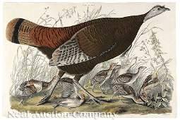 0187: John James Audubon (American, 1785-1851)