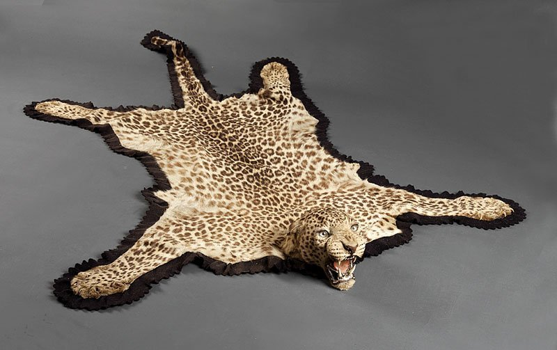 Leopard Taxidermy Rug