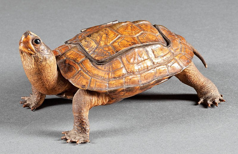 Continental Milk-Glass Fitted Turtle Inkwell