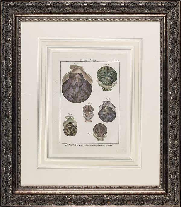 0015: A Set of Six Handcolored Engravings De