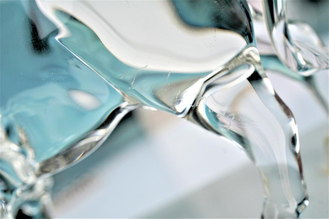 Trabucco Crystal Buffalo - 3