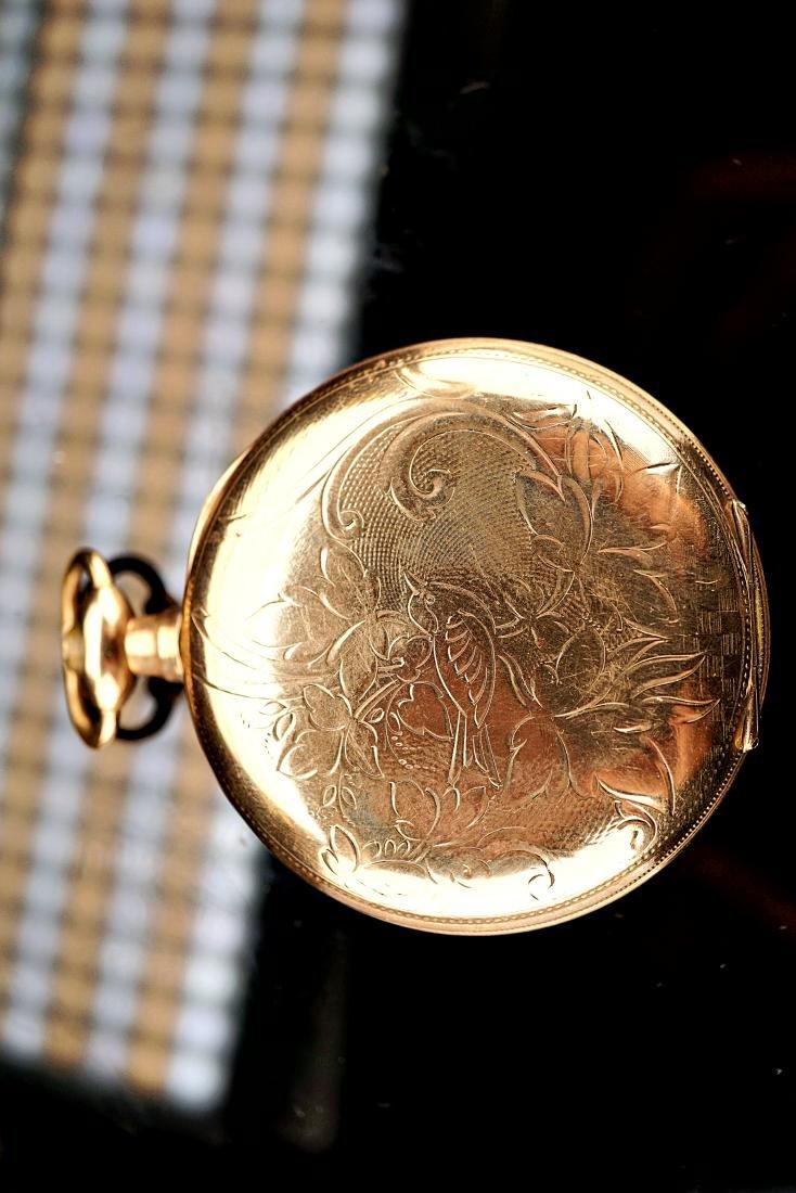 Springfield Illinois 20 Year Pocket Watch 18S - 7