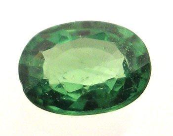 5319: 1.09Ct. Tsavorite Garnet Oval Loose 7x5mm Stone