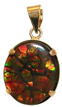 4265: 14KYG 12x10m Ammolite Pendant: 655392