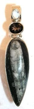 4255: SSilver Morroccan Orthoceras Fossil Pendant: 6999