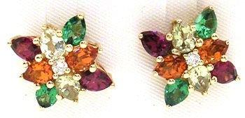 4261: 14KYG Multi-Gem Cluster Earrings: 652101