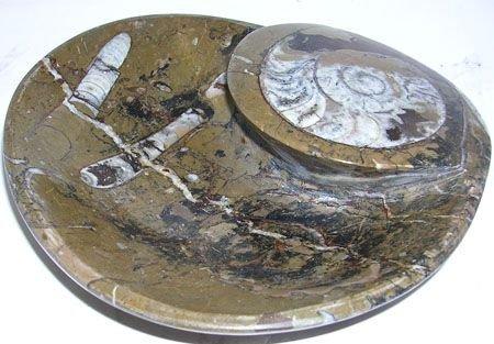 273: Ammonite Bowl 8 1/2 x 6inches: 757910