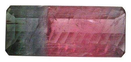 4605: 21.12ct WATERMELON Tourmaline 29x12mm APPRAISED