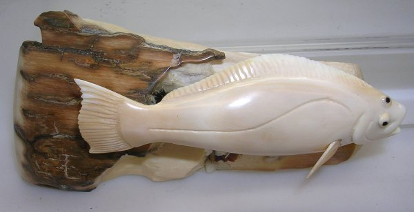 1117: Walrus Ivory Carved Alaska Native Art HALIBUT FIS