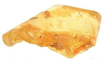 627: 35.25 ct Fossilized Amber Loose