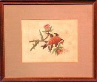 1824A: Antique Hand Colored Lithograph circa 1850