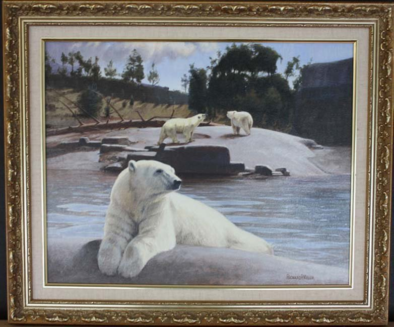 Polar Bears: San Diego Zoo by Richard R. Miller