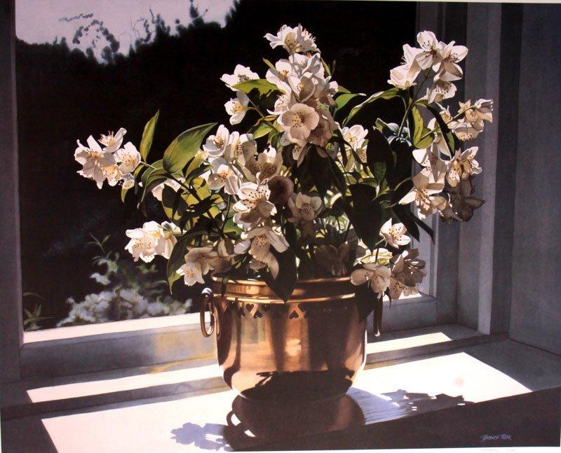 White Jasmine by Barbara Buhr