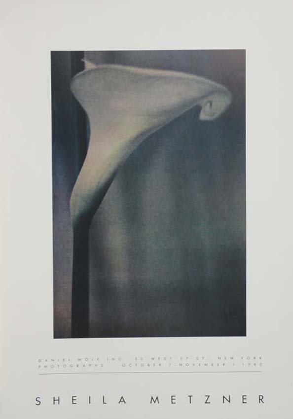 Sheila Metzner exhibition poster
