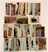 Grand Canyon, AZ Collection 104154