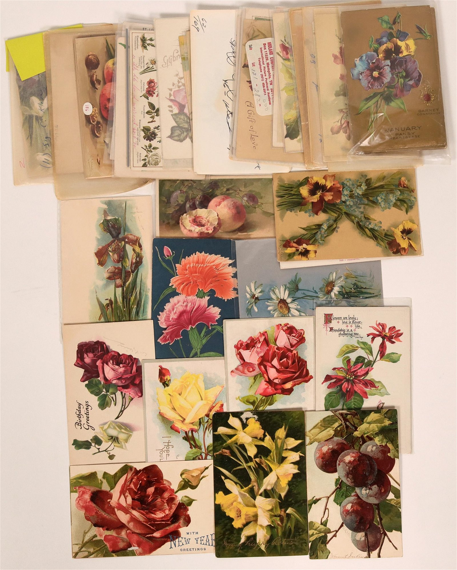 Massive Grouping of Flower Postcards Including Five