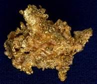 Crystalline Gold - Spectacular South Comstock Specimen!