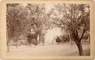 Cloverdale, California Cabinet Card [135878]