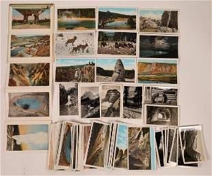Yellowstone/Glacier Park Postcards & Photographs