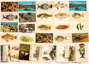 Hawaii Postcard Collection: Fauna [133683]