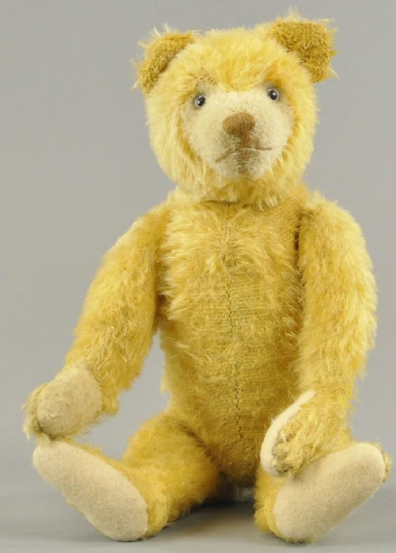 CRAMER TEDDY BEAR