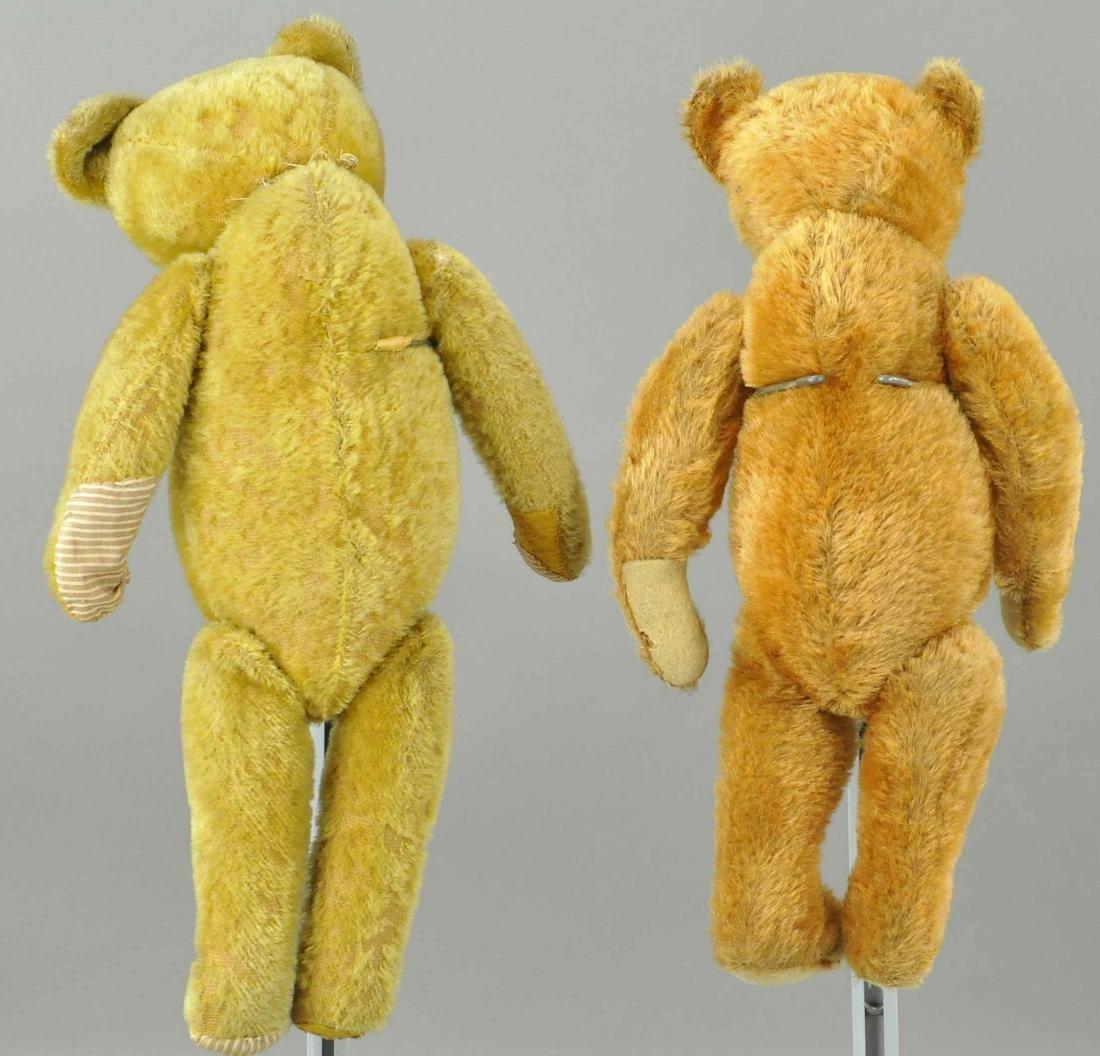 LOT OF TWO TEDDY BEARS - 2