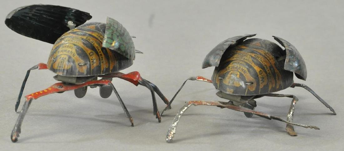 PAIR OF LEHMANN CRAWLING BEETLES - 3