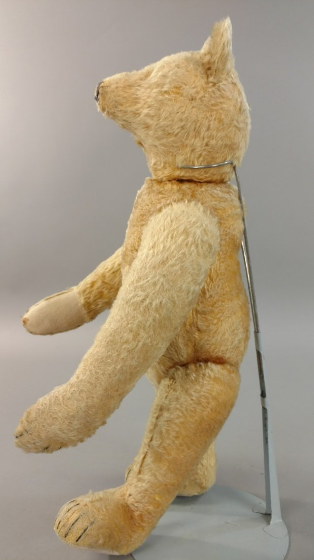 1920'S STEIFF TEDDY BEAR - 3