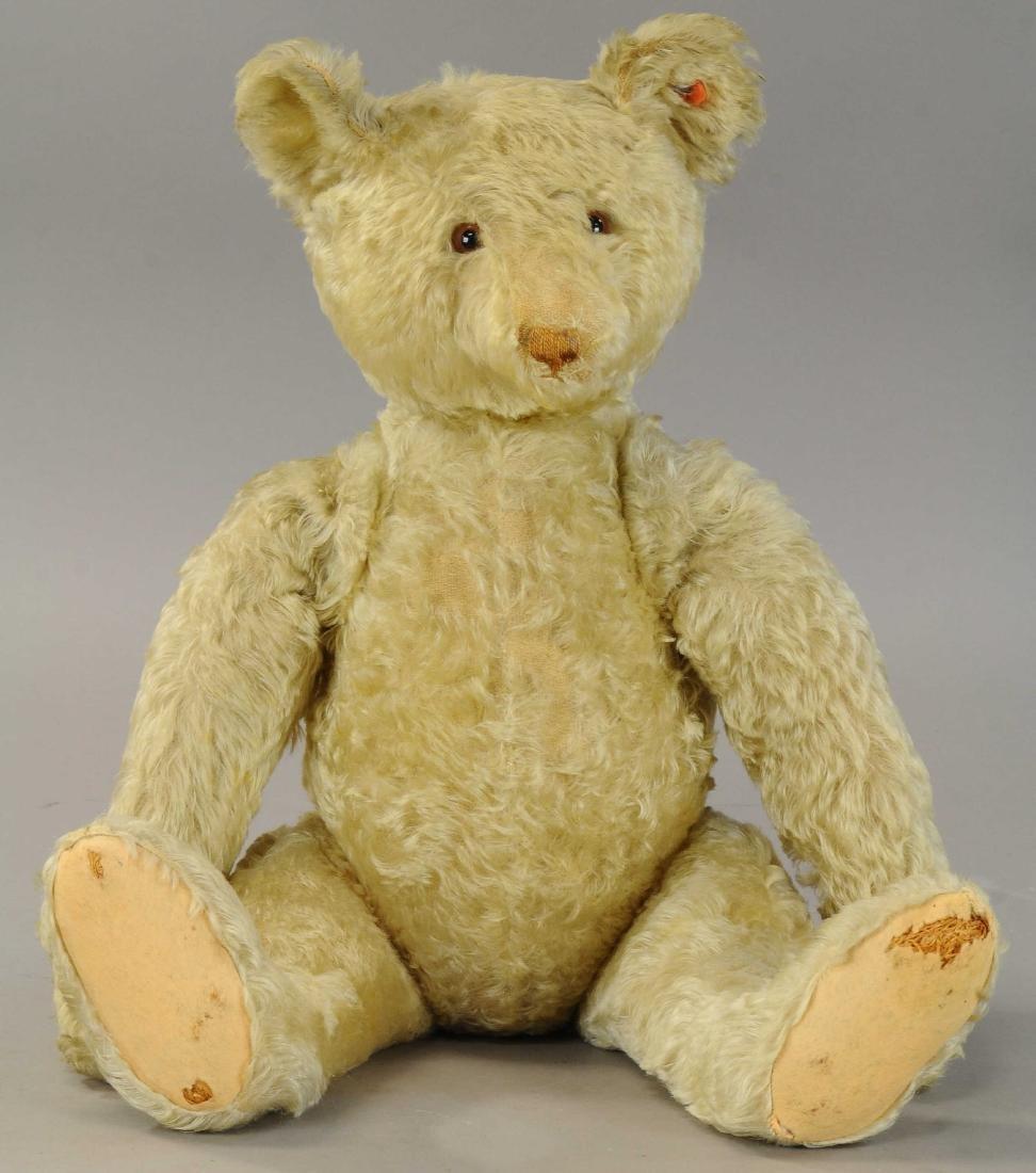 LARGE STEIFF TEDDY