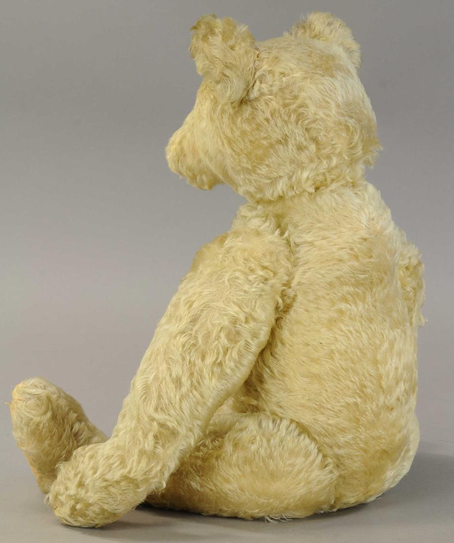 LARGE STEIFF TEDDY - 2