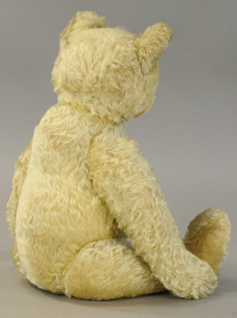 LARGE STEIFF TEDDY - 3