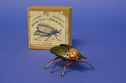 302: LEHMANN BOXED CRAWLING BEETLE