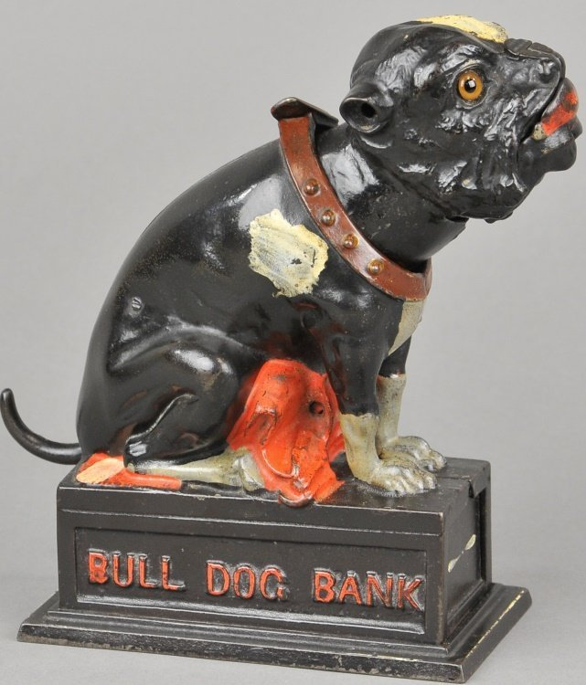 BULL DOG BANK COIN ON NOSE (RED BLANKET)