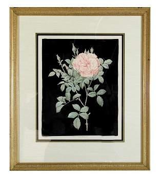 """Set of 6 Framed """"Redoute Roses"""""""
