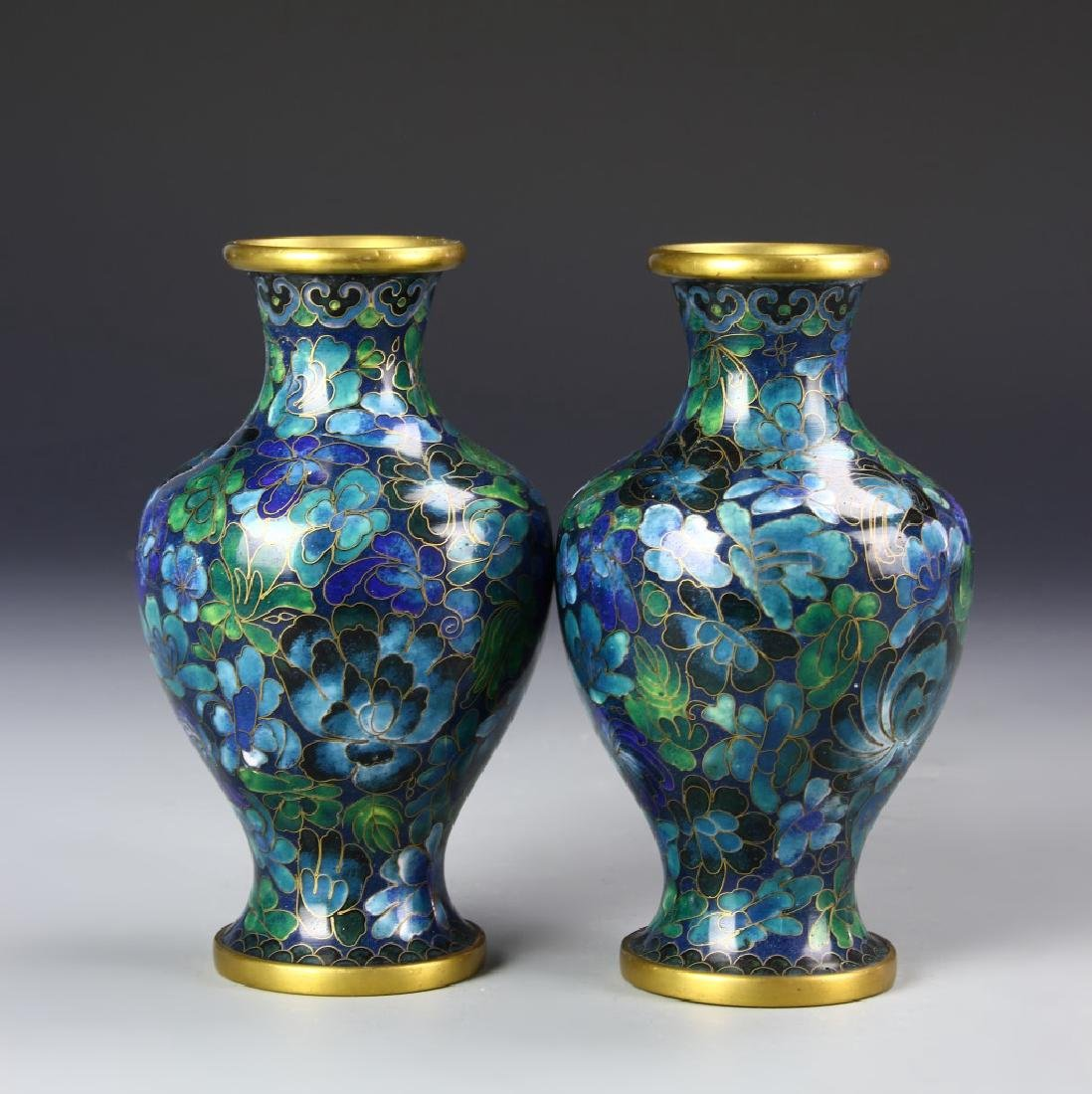 Chinese A Pair Of Cloisonne Vases - 2