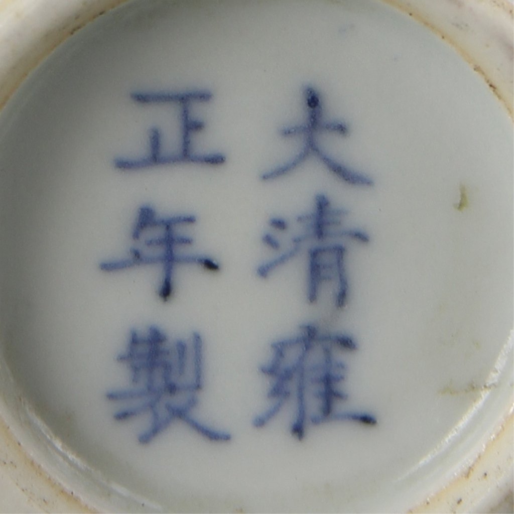 Chinese Blue, White and Copper Red Snuff Bottle - 5