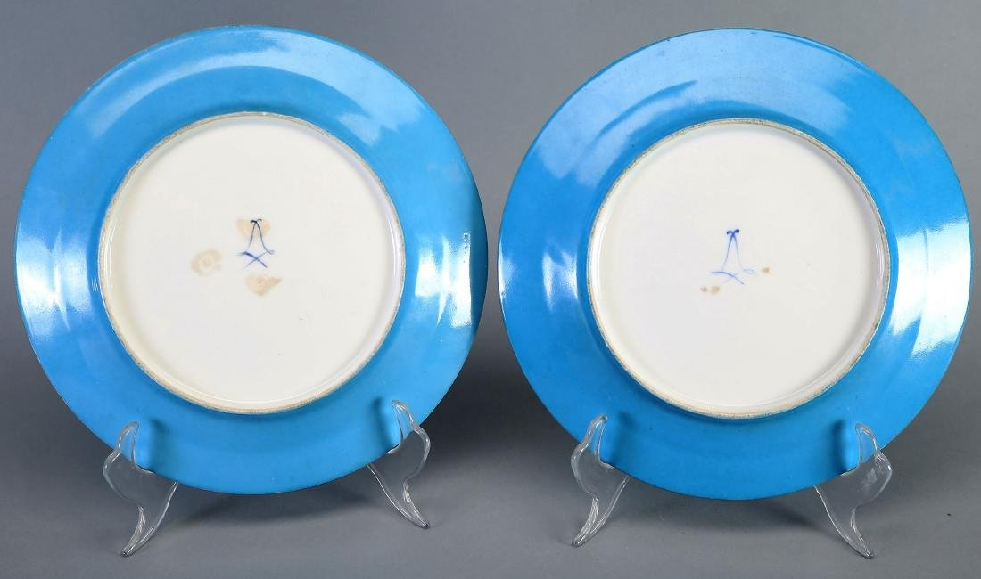 1782 Sevres Porcelain Hand Painted Plates - 6