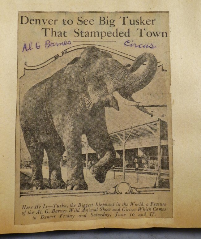 Enormous Shows United! Circus Scrapbook, 1901 Dempsey - 6