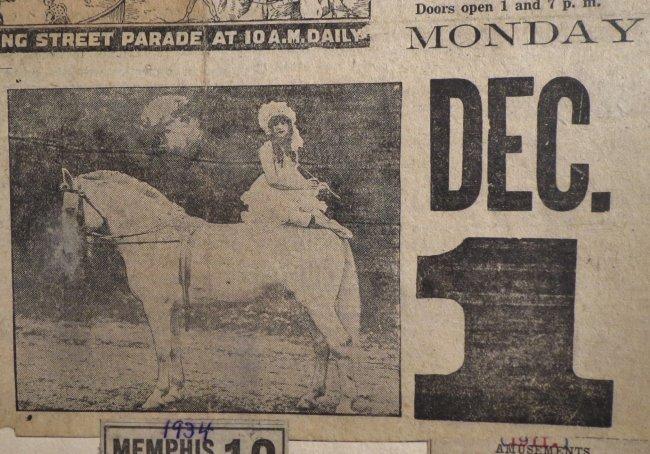 Startling, Stupendous Sensations! Circus Scrapbook 1872 - 3