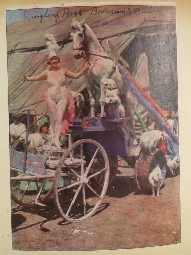 World Famed Artists! Circus Scrapbook, Buffalo Bill + - 6