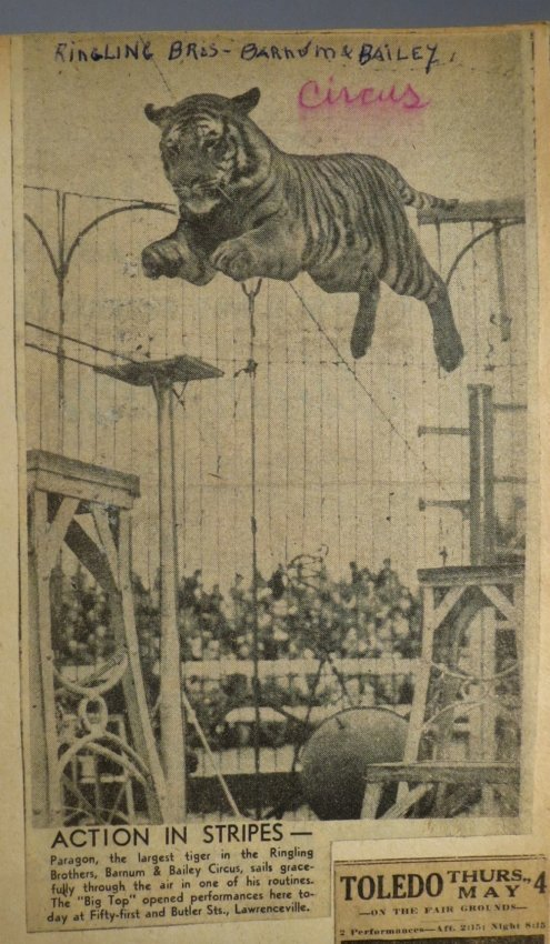 Jumbo Skeleton! Circus Scrapbook, Al G Barnes + 1882 + - 8