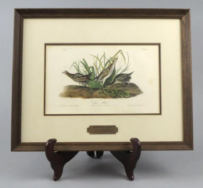 Original John J. Audubon (1785-1851) Sora Rail