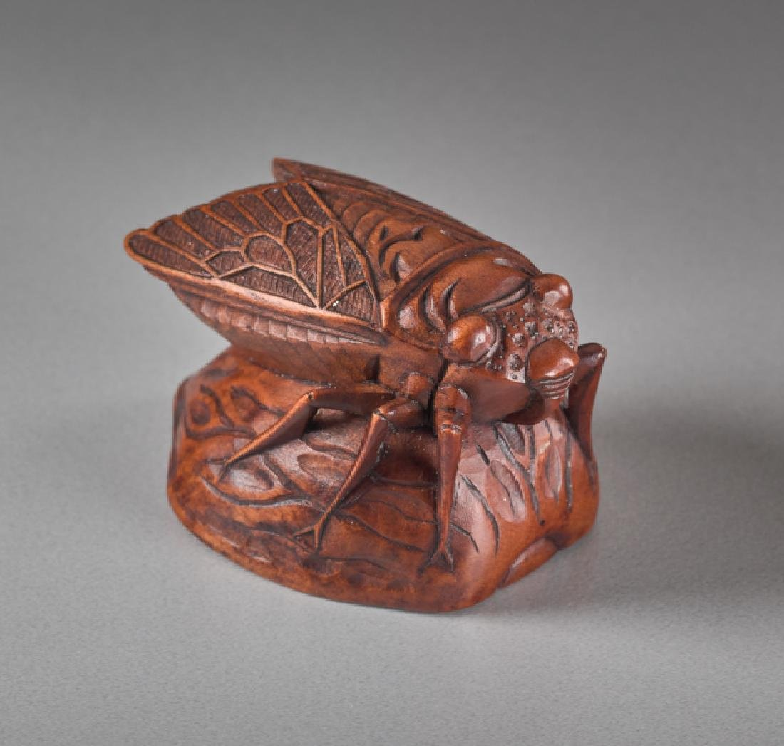 A WOOD NETSUKE OF A CICADA ON A NUTSHELL