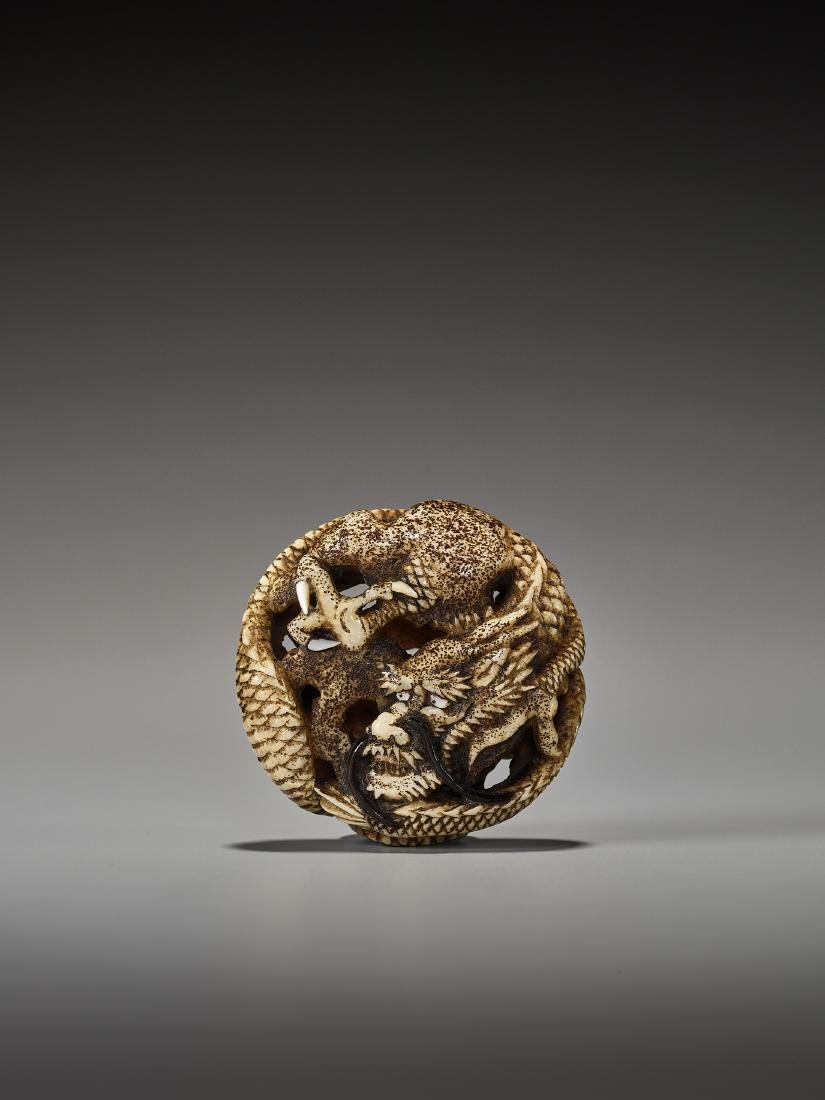 A WALRUS TUSK RYUSA MANJU NETSUKE   OF AN OLD DRAGON