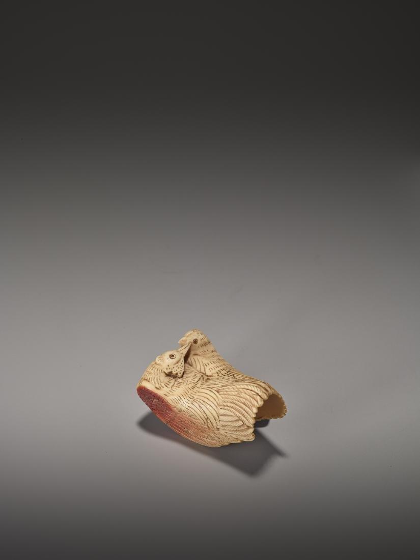 A VERY RARE HORNBILL NETSUKE OF A COCKEREL AND HEN - 2