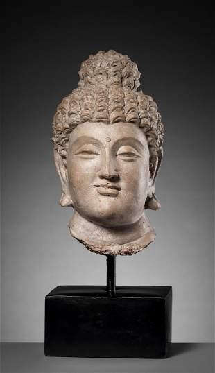 AN IMPORTANT GANDHARA HEAD OF BUDDHA SHAKYAMUNI