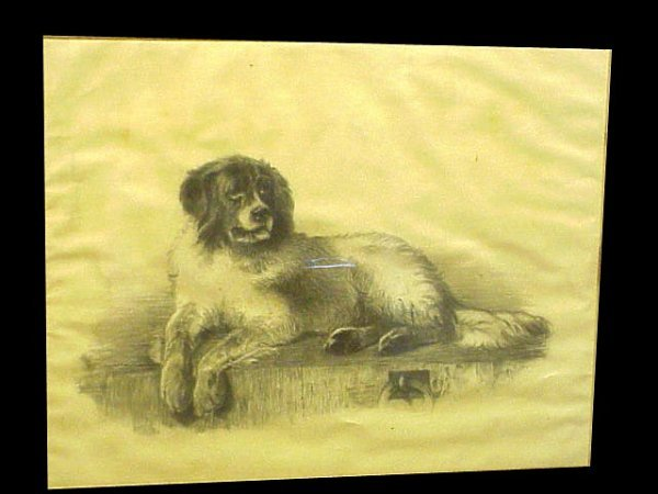 2015: English Victorian Dog Portrait 1898