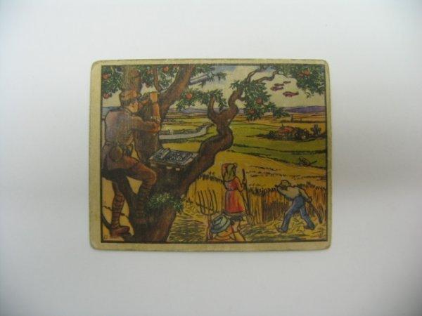 6002: Horrors of War 1938 Gum Inc. Card #278